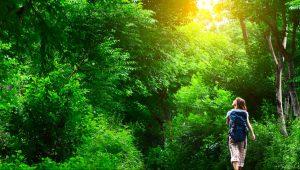 نور طبیعی و تاثیر آن بر انسان